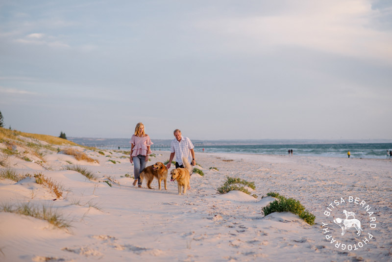 6 dog friendly beaches adelaide