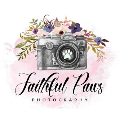 Faithful paws photography