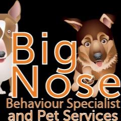 Big Nose Pet Services