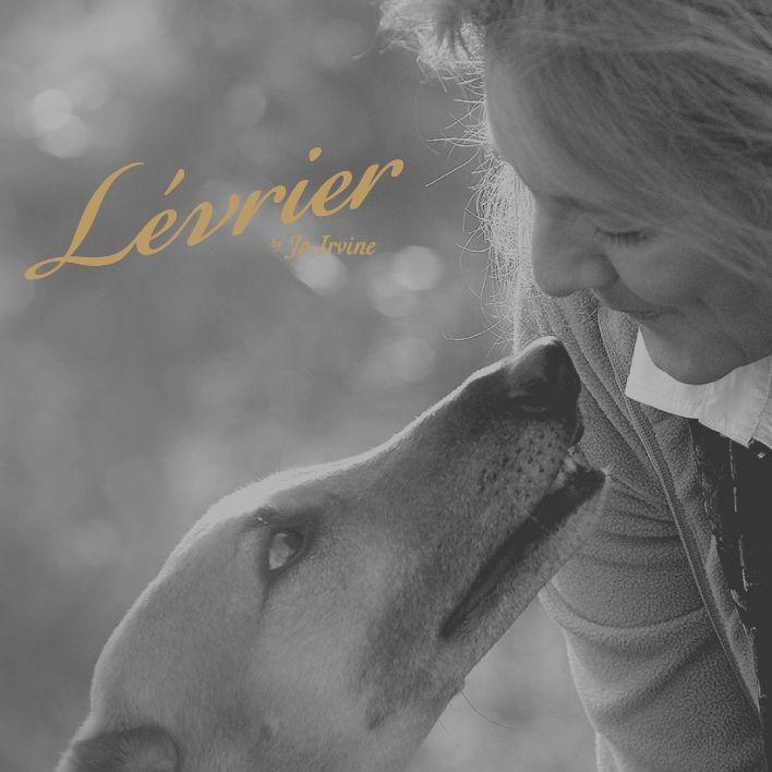 Levrier by Jo Irvine